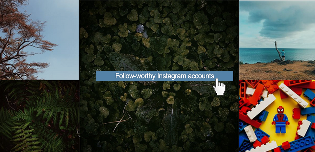 FOLLOW-WORTHY INSTAGRAM ACCOUNTS