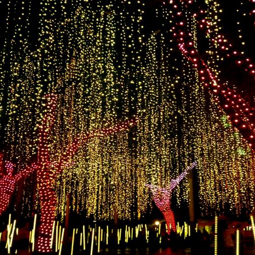 MAKATI SHINES THE BRIGHTEST WITH 'FESTIVAL OF LIGHTS'