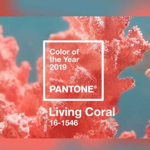 """PANTONE NAMED THE """"LIVING CORAL"""" AS THE COLOR OF THE YEAR 2019"""