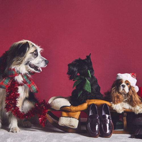 SPREAD THE HOLIDAY CHEERS WITH TOD'S GIFT GUIDE